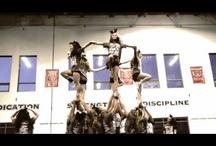 Cheerleading Videos / by Kayleigh Christine