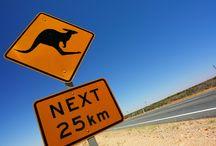 Informations Australie / Toutes les bonnes infos pour vous preparer au mieux pour votre projet de voyage en Australie!