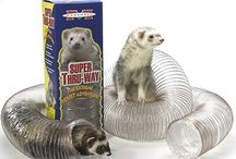 Gifts for FurKids! / by Ferret.com