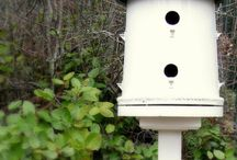 Birdhouses and bird feeder