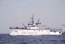 Don Questo liveaboard, diving in Sudan