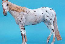 Model Horse / https://www.facebook.com/anddreamofspots/