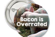 Vegan Living / A board dedicated to vegan living and veganism.