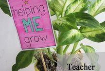 Daycare/teacher love