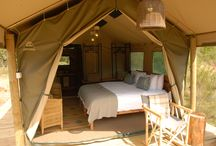 Tented Eco Camp