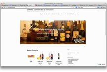Web sites / Wordpress sites