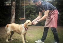 Pets and BBQ Season