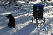 Zimní testy / leden 2015 / Lednová vyjížďka v závějích sněhu...