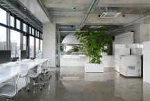 Commercial / Office Interior