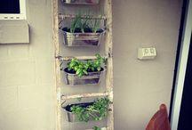 vertical indoor garden/pots