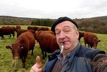 Felfie / Farming Selfie: self-portraits from the farm