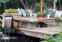 Outdoor & Gardening / Outdoors and Gardening ideas  / by Haydn Dunn