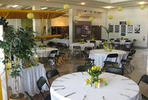 As a Venue / Ideas and inspiration for those seeking a unique, historic venue to host a special occasion--from a retirement dinner to a wedding, a business employees party to a unique dining experience for a conference.