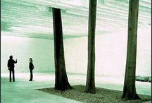 Biennale Venecia / Biennale Venecia