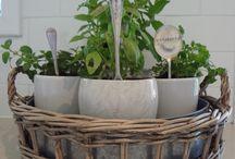 Merry Christmas Simone & Joe! / Ideas for your herb garden