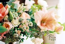 The prettiest of blooms / We think flowers are bloomin' marvellous, don't you?