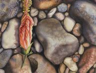 StoneGarden Art / Paintings I have created, inspired by the rocks and flowers I encounter in my travels.