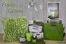 Fresh Green / Unser Thema Fresh Green sieht diese frische freundliche Farbe mit einer Laptoptasche aus Filz, einem flauschigen Kissen in Pistazie. Ein liebevoll für Sie dekoriertes Windlicht  oder ein Herz mit Vasen.