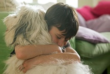 """Healing Power of Pets / From the author of """"Healing Power of Pets,"""" ways in which pets make us healthier and happier."""