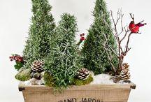 composition florale thème de Noël
