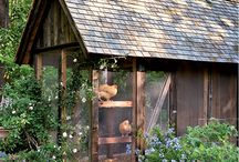 Chickens!! / by Tracy Maxwell