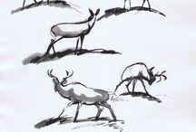 Illustration | Animals