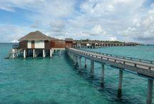 Malediven - Velassaru / Das Resort Velassaru befindet sich auf einer privaten Koralleninsel. Mit weißen Sandstrände und luxuriöse Annehmlichkeiten ist es ein idealer Platz für Ihren Traumuraub im Indischen Ozean.