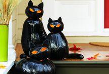Dyňové kočky