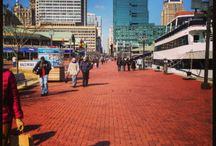 Baltimore Family Travel / Baltimore Family Travel: A Staycation And The Monaco Baltimore