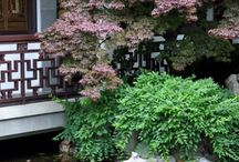 beautiful gardens and plants