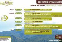 Degustando tra le Vigne: passeggiata tra i vigneti della @valnure 25 giugno Albarola (PC)