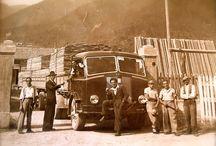 Azienda / Con una storia di oltre 60 anni, la Segheria De Infanti è oggi sinonimo di qualità e di professionalità nella produzione e nella lavorazione del legno.