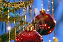 "Holidays / Tips and ideas for a ""stress free"" holiday season. / by Gloria Marrero Favreau, CCP"