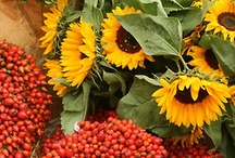Autumn decoration ideas