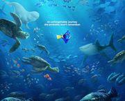 http://streaming.putlockermovie.net/?id=2948370 / ♠ Finding Dory Movie Detail 100 min - Animation   Adventure   Sci-Fi - 2016-06-17 (USA) Director: Walt Disney Pictures Writers: Walt Disney Pictures, etc Stars: Ellen DeGeneres, Albert Brooks, Diane Keaton, Eugene Levy, Willem Dafoe
