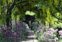 Gardens & Landscape Design