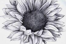 bunga matahari_doodle