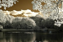 Photography Infra Red