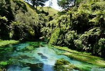 Things to see and do Waikato