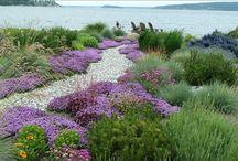 Outdoor spaces / Exteriores: jardines, terrazas