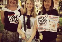 END THE EVIL DOG MEAT TRADE