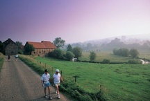 Actief in Zuid-Limburg / De mooiste wandel- en fietsroutes door Zuid-Limburg