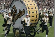 """Purdue Fan / This family bleeds """"black & gold!"""""""