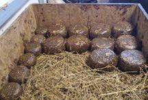 Dietro le quinte - cheese production's backstage / Entra nel cuore della Canti s.a.s