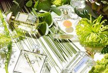 Still Life Perfumes