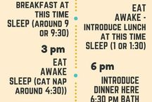 Baby sleep schedule