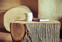 Tree stumps / Pieńki