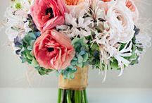 pink elegance / by Jenny Kleven
