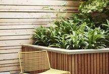Terrace backyard