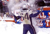 New England Patriots / by Carrie Minnich
